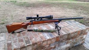 best scope for 22-250