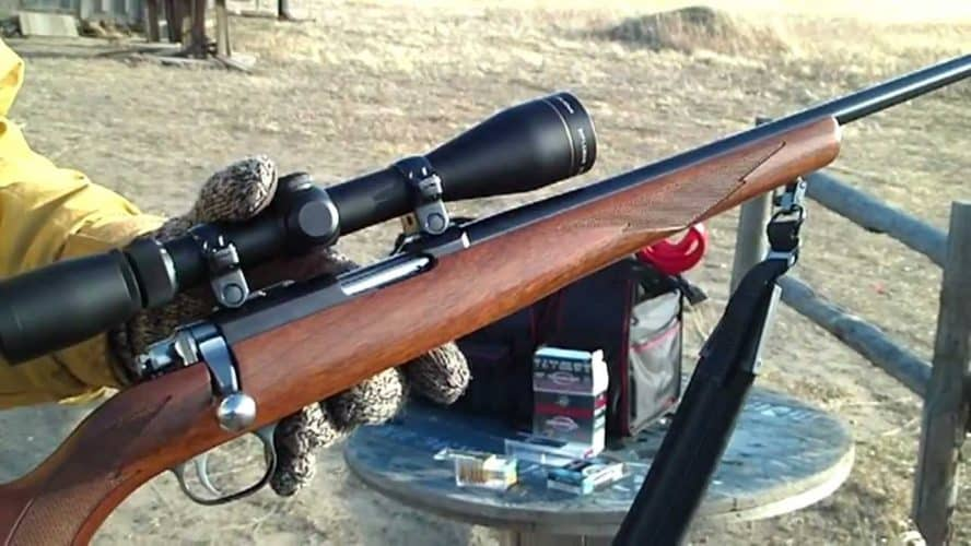 best scope for 22 mag rifle